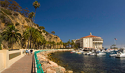 Catalina Island Vacation Rentals