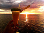 Sunset Cruise + Romantic Dinner on a Motu