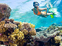 Snorkeling � Reef Discovery