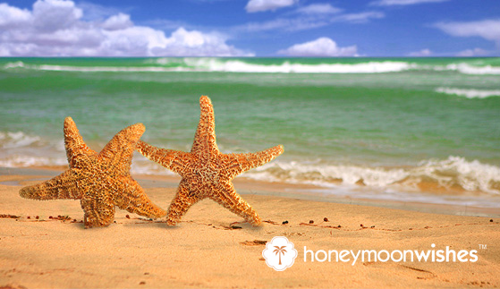 <font color= 6aa9ad >How to Plan The Best (Honeymoon Wishes) Honeymoon for you!</font color>
