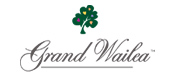 Grand Wailea honeymoon registry