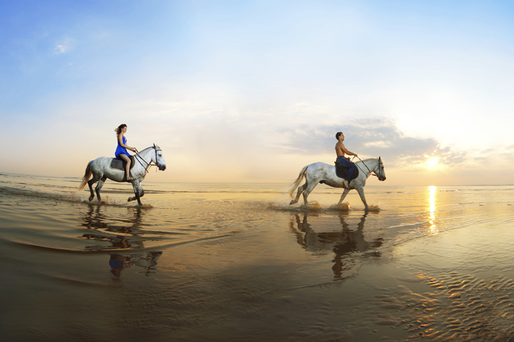 Private Horseback Riding Tour for 2
