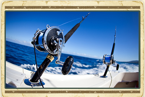 Honeymoon wishes honeymoon registry for Majesty deep sea fishing