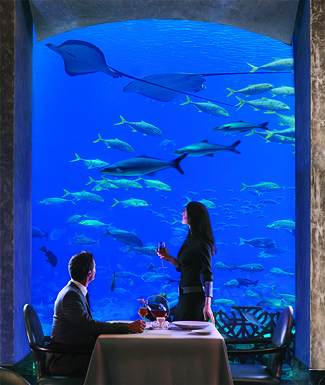 Dining at Atlantis, The Palm