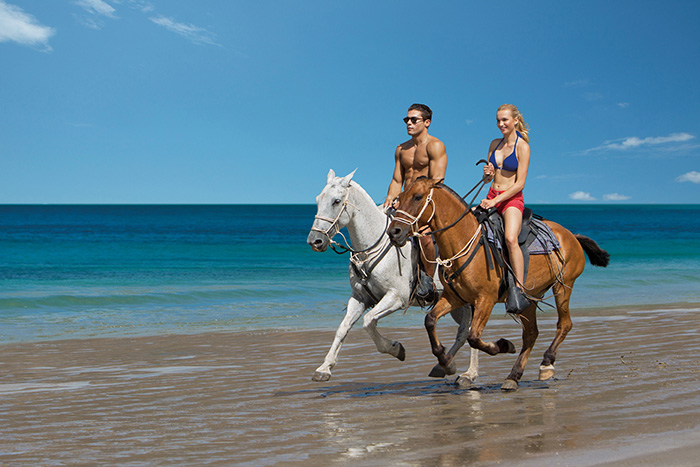 Jungle and Beach Horseback Ride