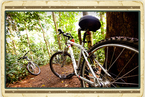 Waterfall Cycling Adventure