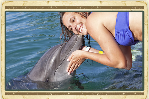 Dolphin Encounter Ocho Rios