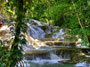 Dunn's River Falls Excursion